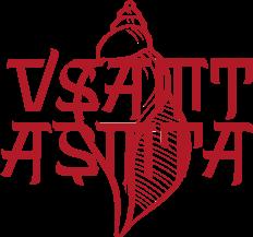 Logo VSAMT