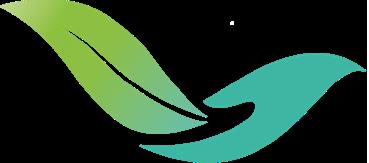 Logo AMVS